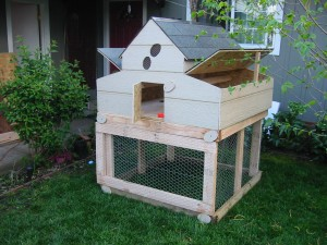 Marin Chicken Coop